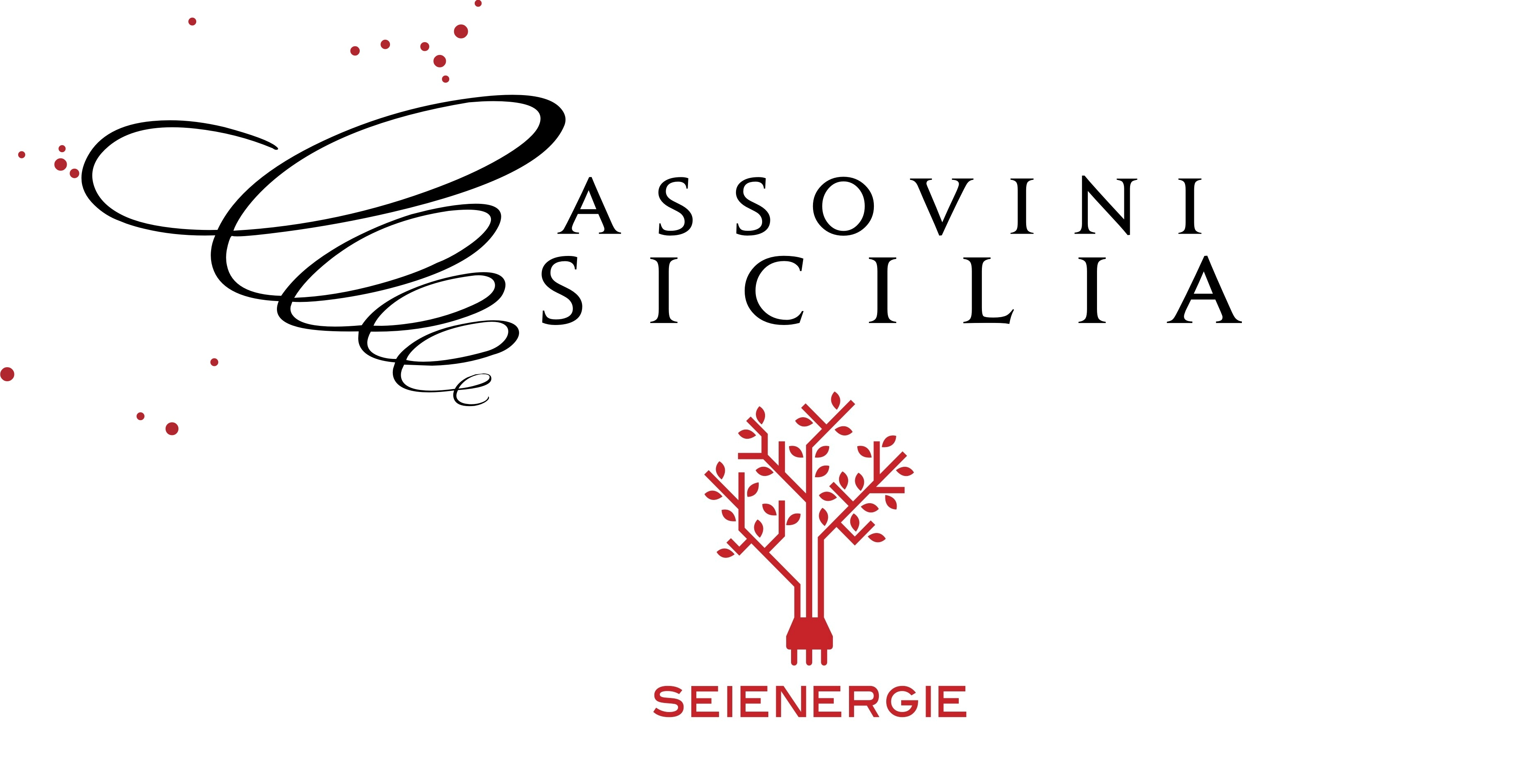 Seienergie + Assovini