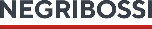 EXE_primary logo_negribossi