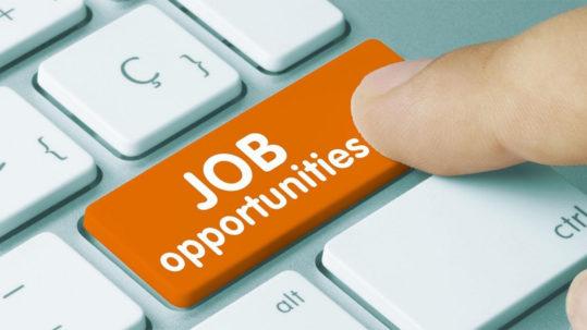 offerta di lavoro